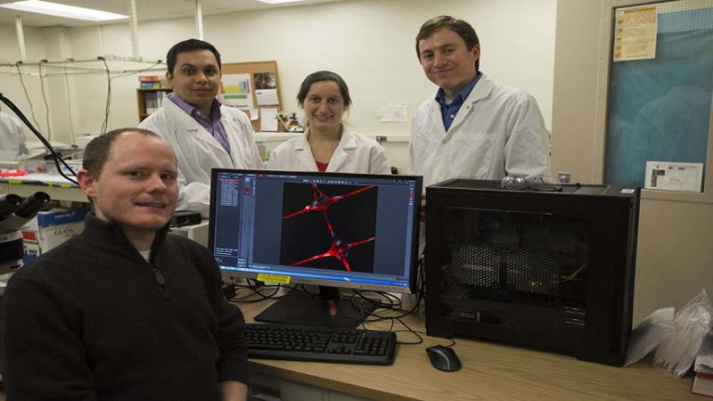 3D Near Field Electrospinning Method can create Scaffolds for Living Tissue Penn State