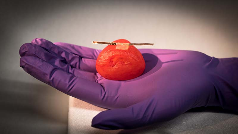 Researchers develop 3D Printed Organ Models that react like Actual Organs