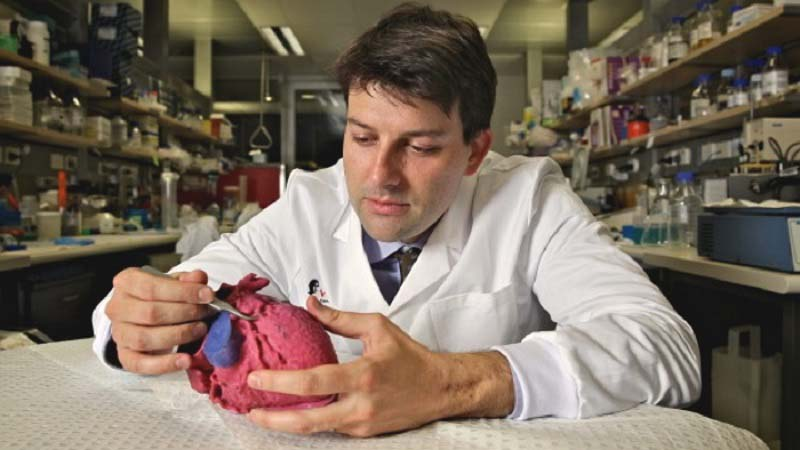 3D Printed Heart Models help Doctors in Poland